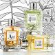 L`Occitane en Provence(欧舒丹)Les Classiques经典系列香水:Ambre, Eau des 4 Voleurs, 和Eau d`Iparie