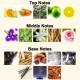 香味地图和区域:一款香水里多少成分才足够?