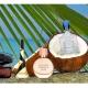 椰子味的幻想萦绕:防晒霜椰子味的香味集合
